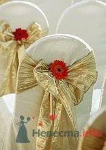 Фото 7144 в коллекции Свадебный антураж - leshechka