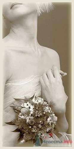 Фото 14115 в коллекции Свадебная фотография - leshechka