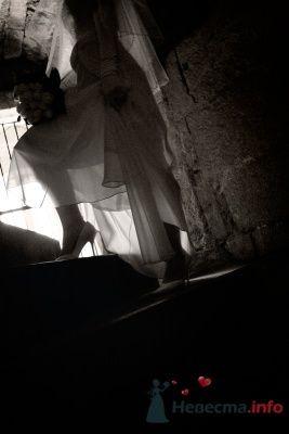 Фото 14419 в коллекции Свадебная фотография - leshechka