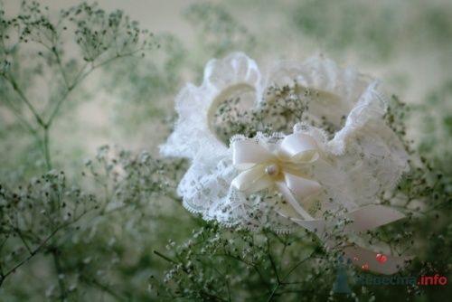 Фото 14430 в коллекции Свадебная фотография - leshechka