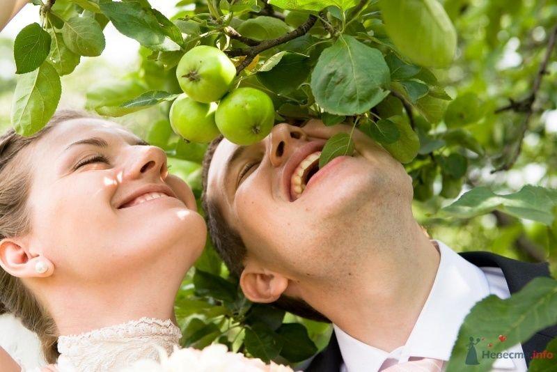 Фото 34342 в коллекции Моя свадьба - leshechka