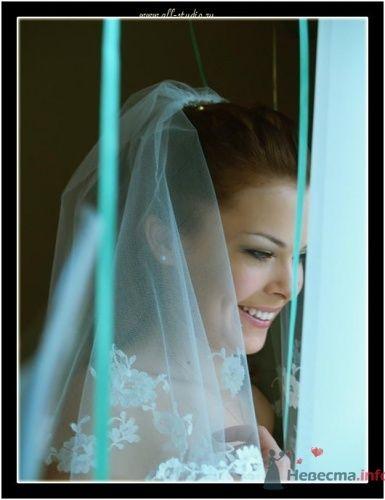 Фото 649 в коллекции Свадьба Паши и Насти - Студия фото и видеосъемки Aliya Pavrose