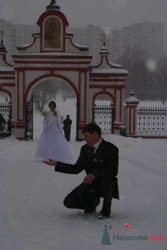 Фото 9027 в коллекции Свадьба - Victoria