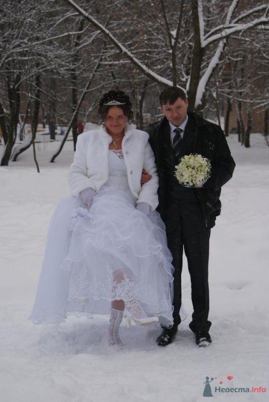 Фото 62012 в коллекции Свадьба - Victoria
