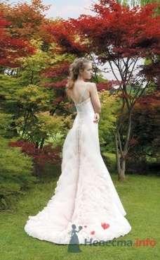 Свадебное платье Atelier Aimee от ПЛЮМАЖ - фото 1148 Плюмаж - бутик выходного платья и костюма