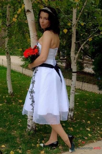 Фото 54937 в коллекции 2 часть марлезонского балета - Alliene