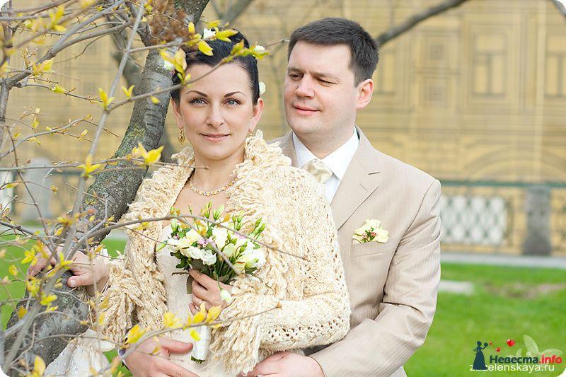 Фото 94337 в коллекции Свадьбы - Фотограф Оксана Зазеленская