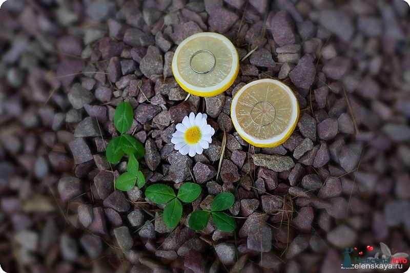 Ася (Shuga) и Тимур - 04.06.10 - фото 108019 Фотограф Оксана Зазеленская