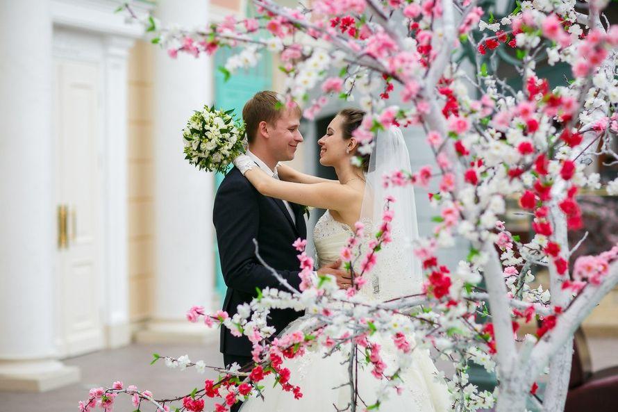 Фото 5954170 в коллекции Свадебки золотые - Фотограф Арина Чеграхчи