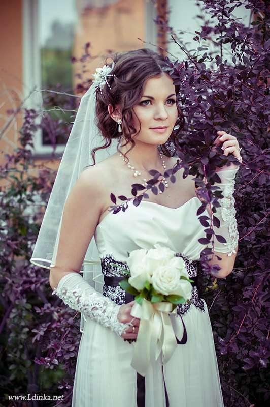 Фото 2179734 в коллекции Мои фотографии - Профессиональный фотограф Любовь Дубовик