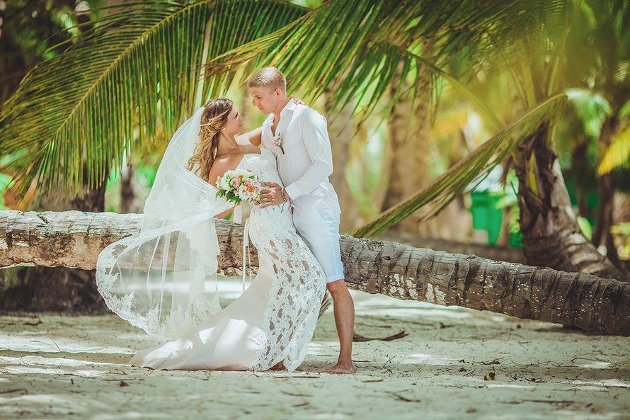 рецепты фотографы на свадьбу доминикана того