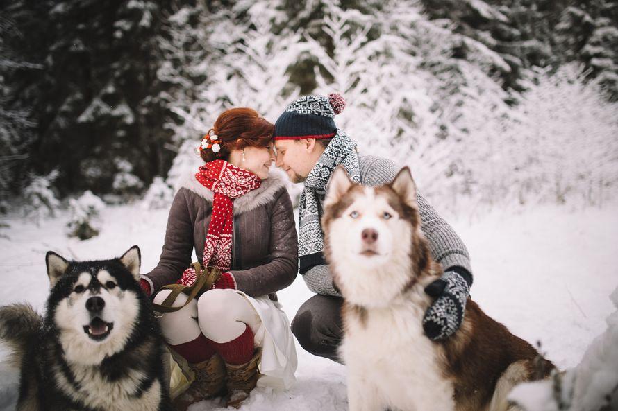 Фото 6053159 в коллекции Зимняя сказка для Маши и Юры - Фотограф Владимир Большаков