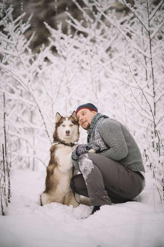 Фото 6053161 в коллекции Зимняя сказка для Маши и Юры - Фотограф Владимир Большаков
