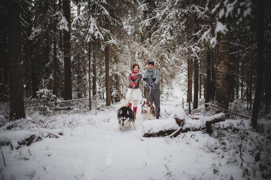 Фото 6053163 в коллекции Зимняя сказка для Маши и Юры - Фотограф Владимир Большаков