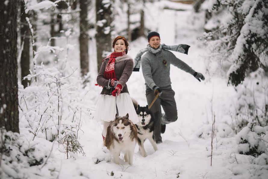 Фото 6053167 в коллекции Зимняя сказка для Маши и Юры - Фотограф Владимир Большаков