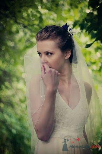 Фото 40814 в коллекции Наша свадьба by kaioshk.ru -- фотограф Мария Ширяева - malysh_eva