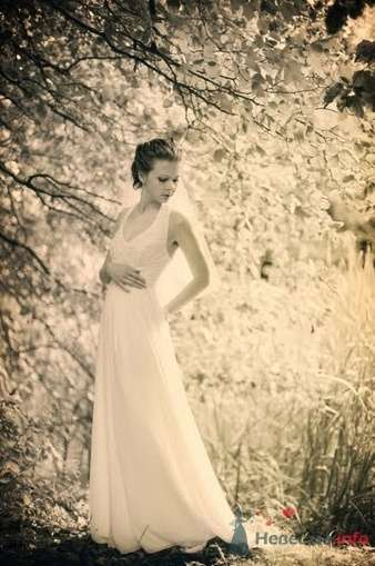 Фото 40815 в коллекции Наша свадьба by kaioshk.ru -- фотограф Мария Ширяева - malysh_eva