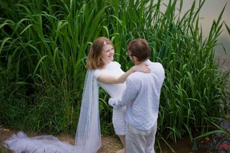 Жених и невеста стоят, прислонившись друг к другу, возле камыша - фото 53326 malysh_eva