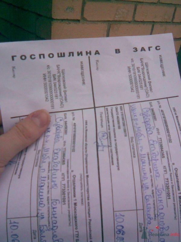 оплачиваем госпошлину - фото 26737 Katerina22