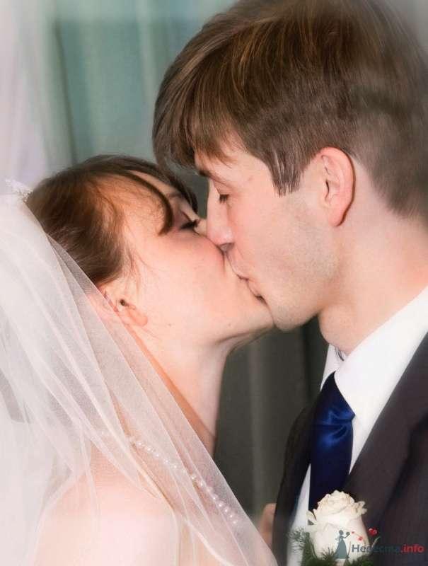 Фото 41949 в коллекции наша веселая свадьба - Katerina22