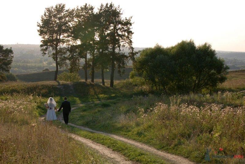 Фото 42845 в коллекции Моя свадьба - Афалина