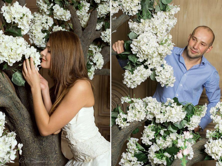 Alio Sandro. Свадебный и семейный фотограф. +7-981-845-3165  - фото 6224651 Фотограф Alio Sandro