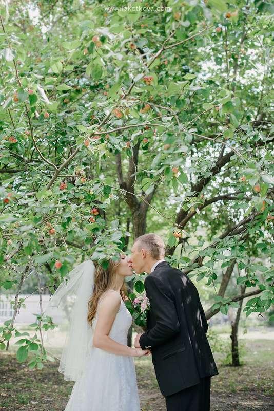 Фото 6615906 в коллекции Свадебная фотография. Wedding  - Фотограф Любовь Локоткова