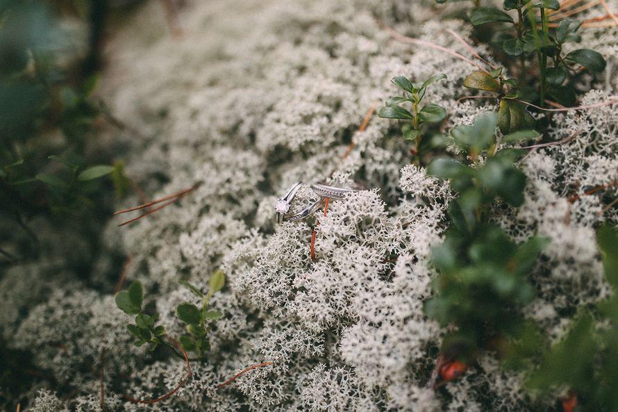 Фото 6504314 в коллекции Иван и Юлия - Фотограф Илья Чупров