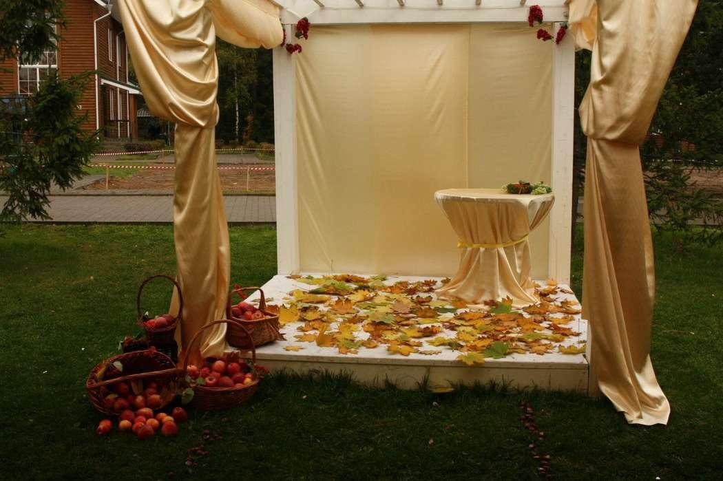 Арка для регистрации - фото 6737926 Flower pie - флористика и декор