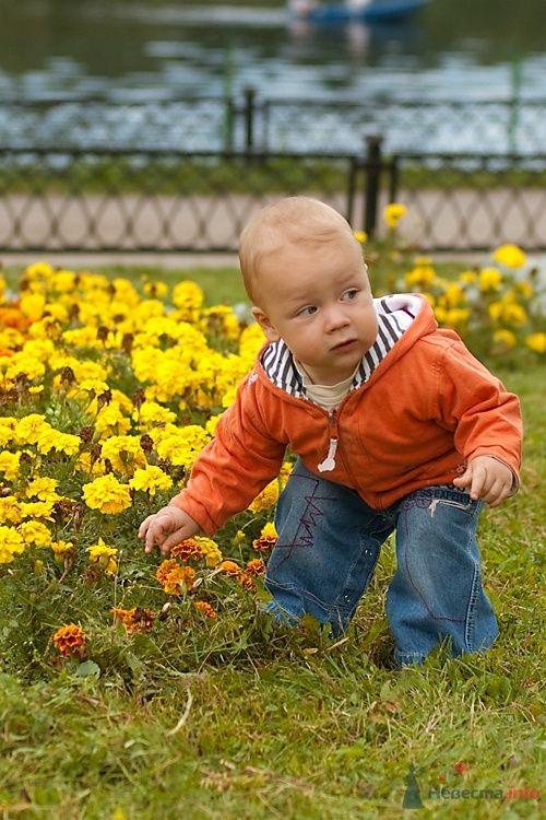 Фото 40373 в коллекции Дети - Фотограф Корочкин Олег