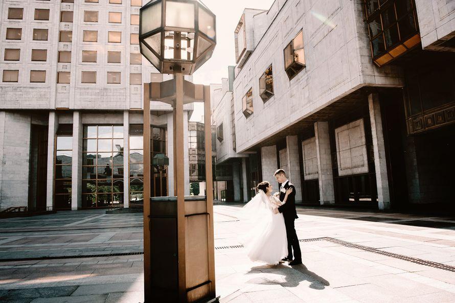 свадьба, прогулка, свадебная фотосессия, фотограф, фотография, свадьба, жених, невеста, белый - фото 17886042 Маслова Виктория - фотограф