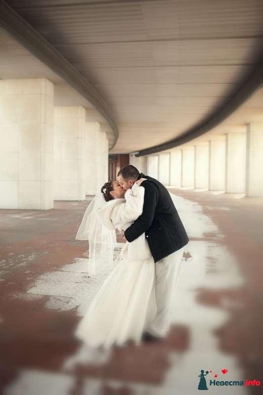 Татьяна и Дмитрий - фото 439070 Фотограф Андрей Завьялов