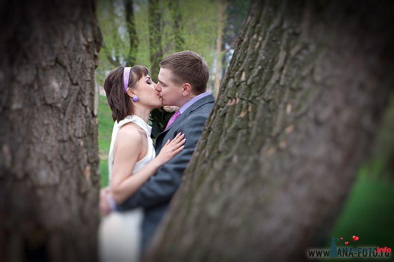 Фото 105307 в коллекции Свадьба Евгении и Бориса - Фотограф Яна Роджерс