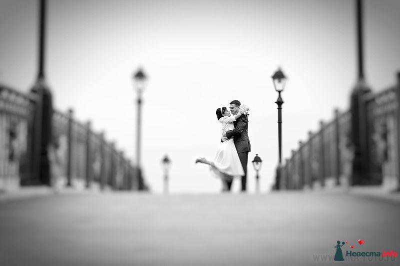 Фото 105369 в коллекции Свадьба Евгении и Бориса - Фотограф Яна Роджерс