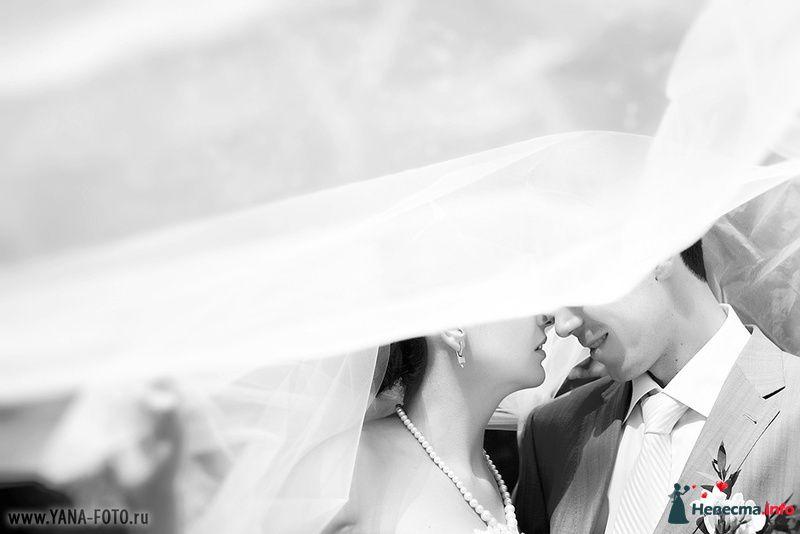 Фото 123720 в коллекции Свадьба Ольги и Рината - Фотограф Яна Роджерс