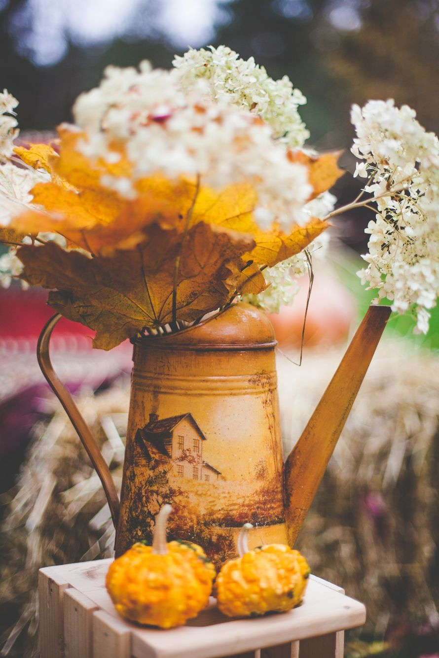"""Фото 8040876 в коллекции Осенняя фотозона - """"Важный день"""" - декор и флористика"""