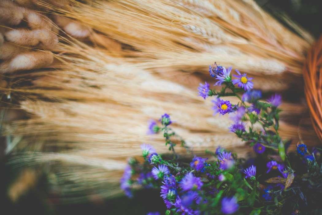 """Фото 8040894 в коллекции Осенняя фотозона - """"Важный день"""" - декор и флористика"""