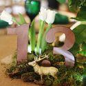 Свадьба в лесом стиле Свадьба в весеннем стиле Зеленая свадьба Бело-зеленая свадьба Бело-зелено-золотая свадьба Мох Сервировка Рустик