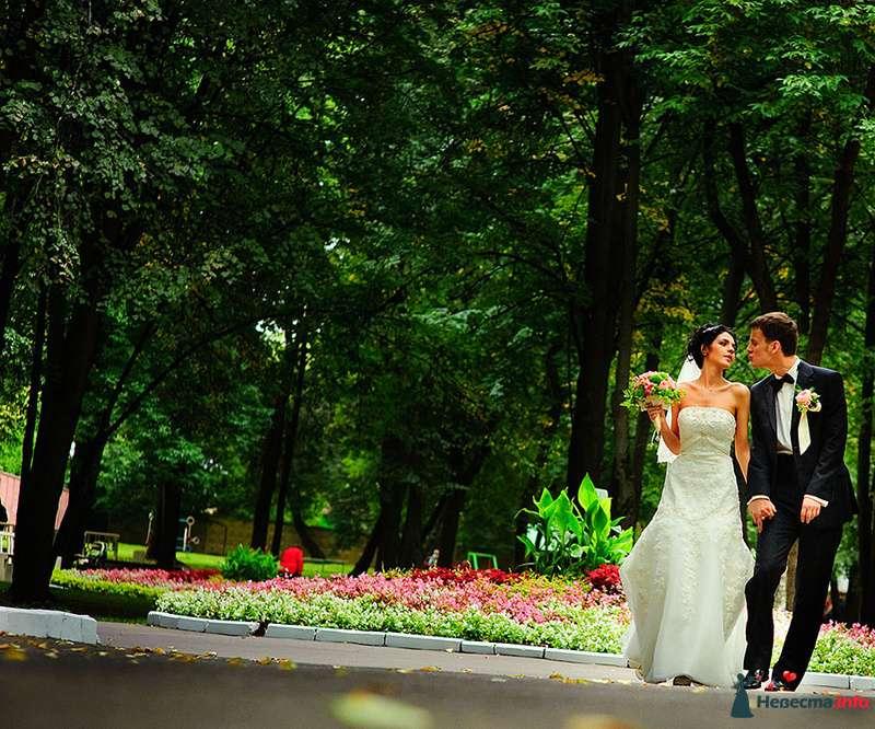 Фото 103742 в коллекции Свадебные фотографии - Garriy