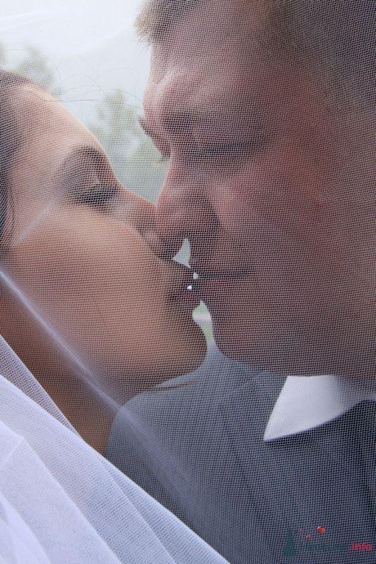 Фото 28413 в коллекции Свадебные фото - Фотограф Ольга Моторная