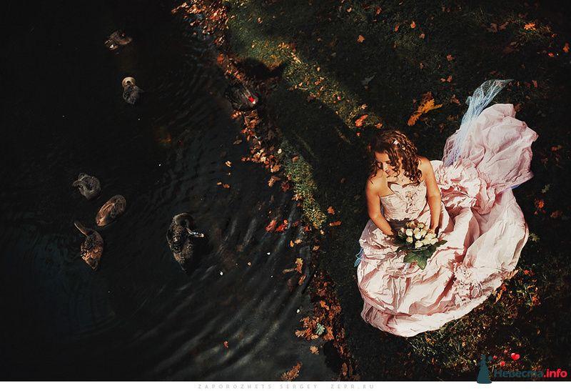 Невеста в розовом длинном платье стоит в осеннем парке - фото 81527 Фотограф Запорожец Сергей