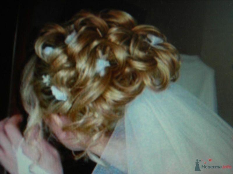 Невеста расстрогалась...  - фото 28389 Снежиночка