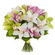 Фото 8181478 в коллекции Портфолио - Доставка цветов и букетов Астра-Пак