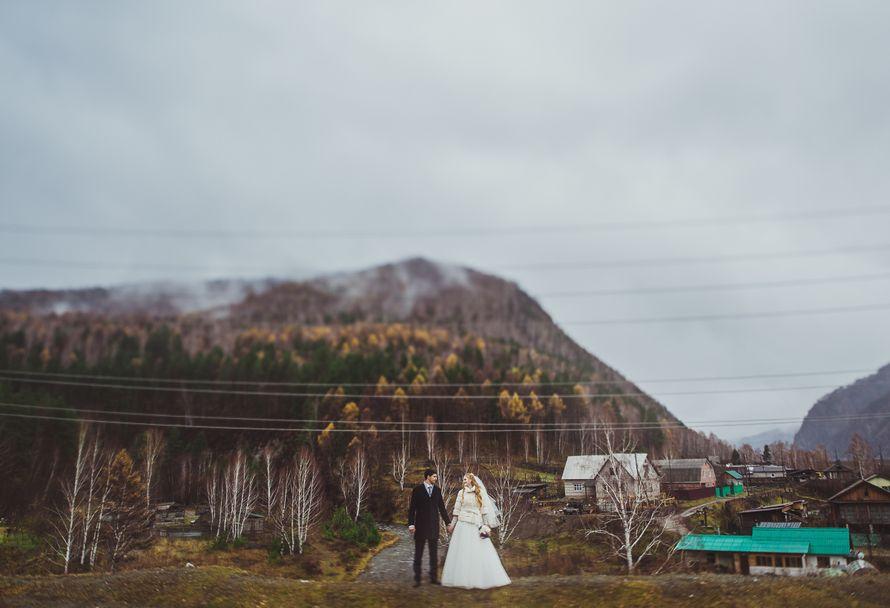 Фото 8584026 в коллекции Портфолио - Свадебный фотограф Дмитрий Кох