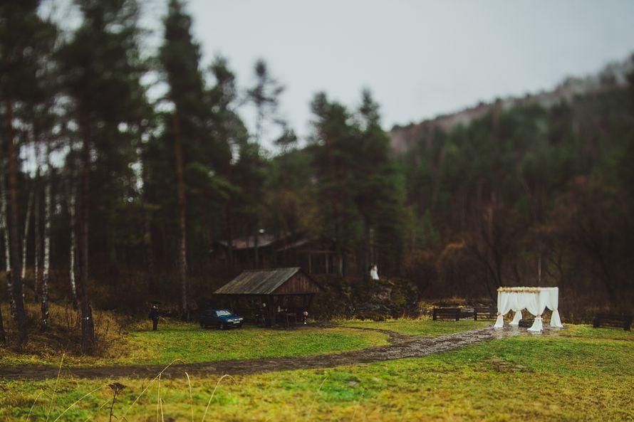 Фото 8584038 в коллекции Портфолио - Свадебный фотограф Дмитрий Кох