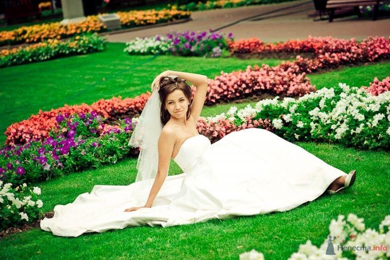 Невеста в белом платье сидит на цветочной клумбе