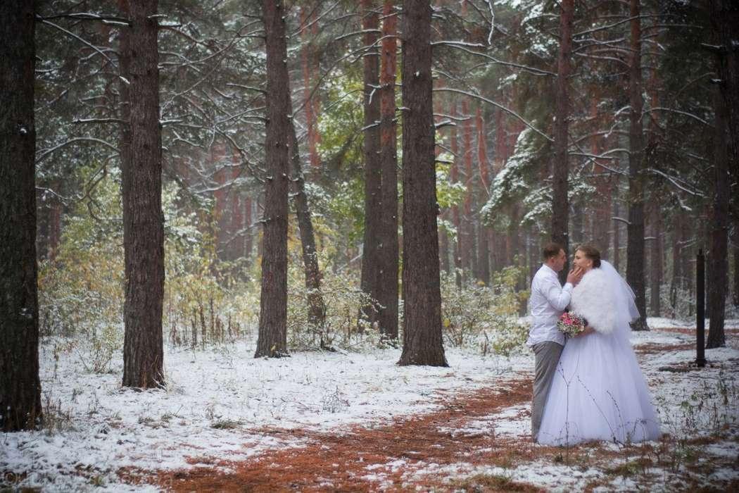 Альберт и Светлана 10.10.15 - фото 8973246 Фотограф Любовь Советова