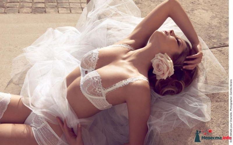 Девушка в кружевном прозрачном белье лежит на свадебной фате. - фото 431012  Weddingmoon - белье для красивой свадьбы