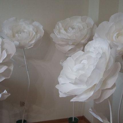Гигантские цветы