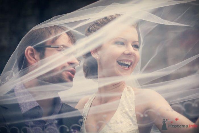 Жених и невеста стоят вместе под фатой
